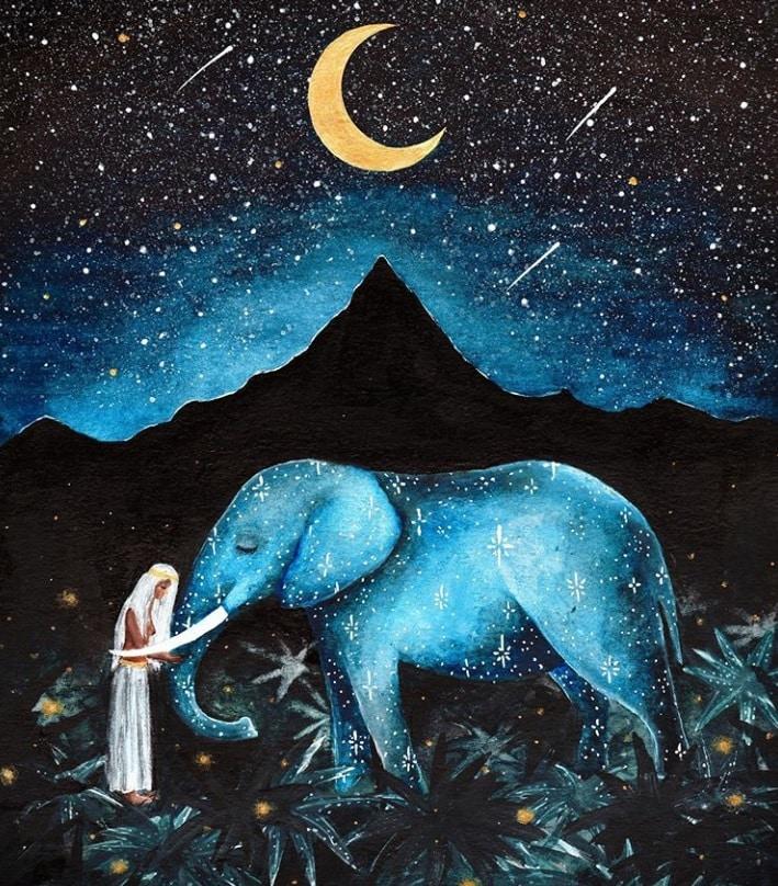 silové zvíře slon
