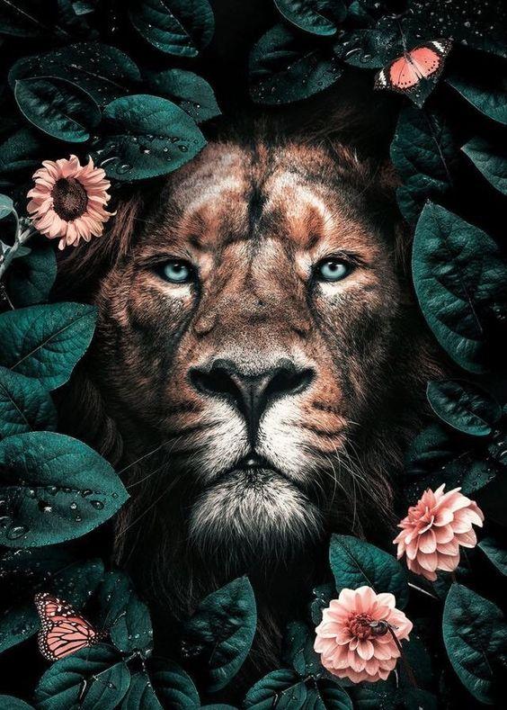 lev  silové zvíře  duchovní spojenec
